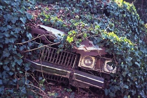 Zadbany samochód to sprawny samochód